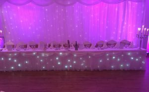 Fairylit Wedding Party Backdrop - Dublin Wedding DJ